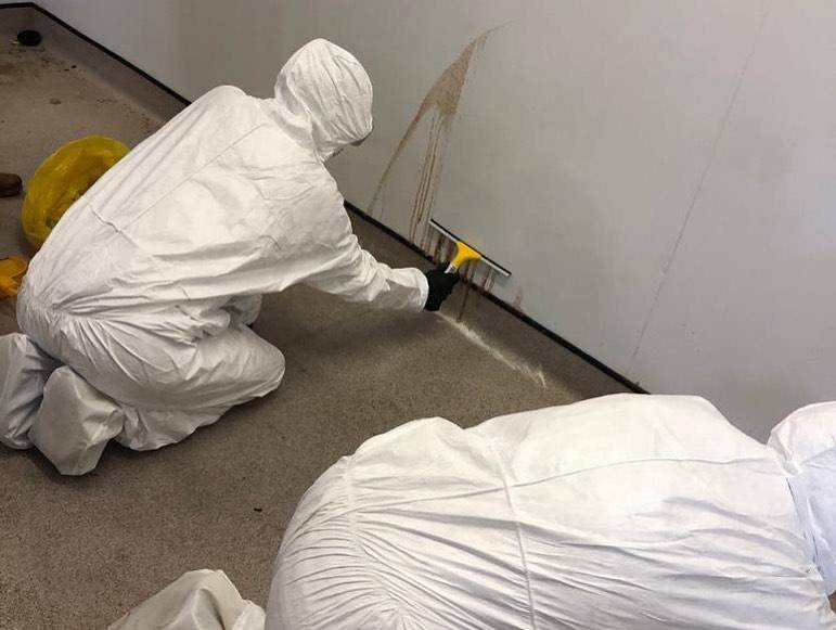 People in protective clothing cleaning